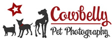 2009-cowbelly-star-logo-225px-wide