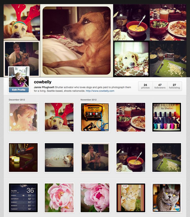 Cowbelly Instagram Photo Feed