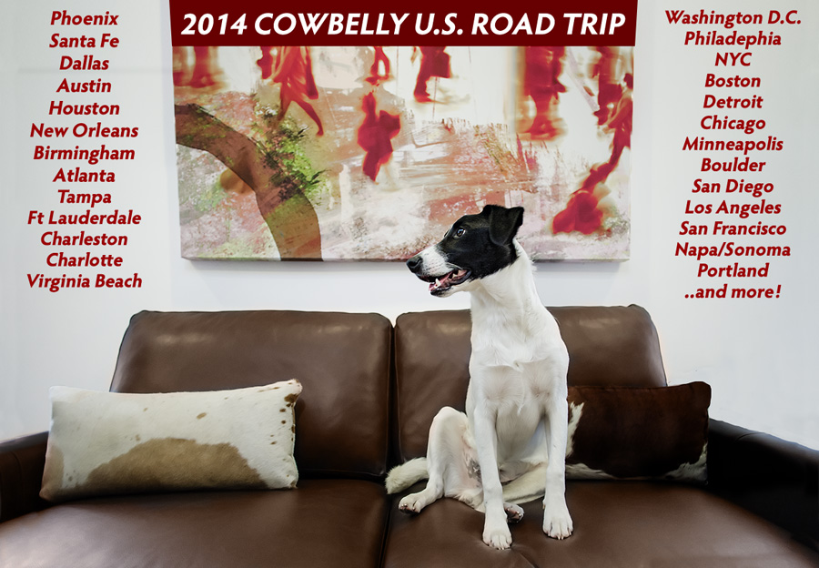 pet photography road trip by cowbelly